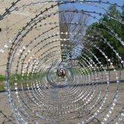 Колючая проволока Егоза Кайман 900/5 фото