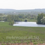 Большой земельный участок в экологически безопасном районе Нижегородской области фото