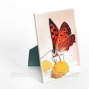 Печать на плитке керамической 15х20 см, до 10 шт фото