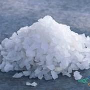 Соль техническая купить, цена фото