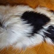 Овечья шкура длинный ворс фото