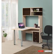 Стол компьютерный-2 СК-2 фото