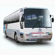 Перевозки автобусные туристические, пасажирские перевозки фото