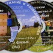 Продаю CD\DVD фильмы по пчеловодству фото