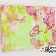 Бабочки в цветах арт.ТФХ3349 v2 фотокартина (Размер R1 40х60 ТФХ)
