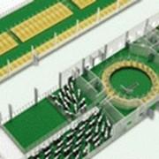 Строительство ферм На 500 голов с доильной площадкой ЁЛОЧКА, 40 доильных мест фото