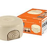 Коробка распаячная фарфоровая D7,8х4,5см «ЭКО» сосна TDM фото