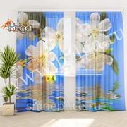 Весенние цветы арт.ТФТ2303-h275 (145х275-2шт) фототюль (штора Шифон ТФТ) фото