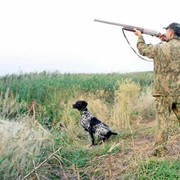 Охота сезонная фото