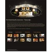 Разработка дизайна сайта для Гостиничного комплекса Триумф фото