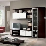 Мебель для дома в Молдовии фото