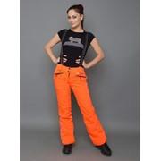 Горнолыжные брюки D-013 фото