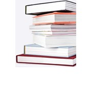 Амбарные книги фото