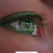 фото предложения ID 607277