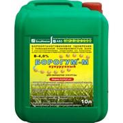 Бороорганогуминовое удобрение Борогум М кукурузный