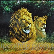 Набор для вышивки картины Львиная пара 77х61см 373-37010698 фото