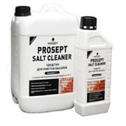 УдалитЕль высолов с минеральных поверхностей PROSEPT SALT CLEANER - концентрат 1:2, 5 литров фото