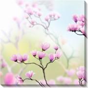 Модульная картина Весна. Магнолия., Неизвестен фото