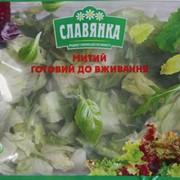 Салат под заказ, салат Айсберг, салат Радичио, салат Ромен, салат Фризе, салат Премиум, салат Неаполитанский, салат Греческий фото