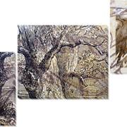 Модульная картина Гравюра , Неизвестен фото