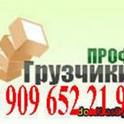 фото предложения ID 18813201