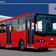 Городской автобус Волжанин 5270 фото