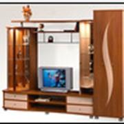 """Мебель для гостиной """"SD-1"""""""