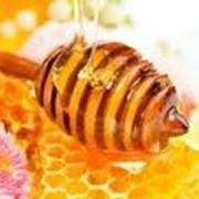 Мёд натуральный из степного разнотравья фото