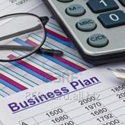 Бизнес план Лайт фото