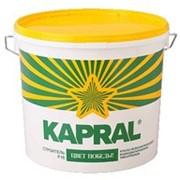 Краски Kapral, Текс фото