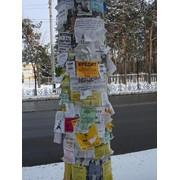 Листовки под расклейку фото