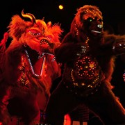 Светодиодное шоу, электрические костюмы, лайт-шоу, огненное шоу, огненный театр, ростовые куклы, танец дракона, танец тигра, костюм дракона, костюм быка, red-bull, символ года, оригинальный жанр, шоу-программа, шоу-группа, восточное шоу, восточный театр фото