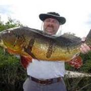 Рыба балычные изделия
