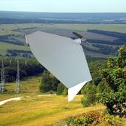 Беспилотный самолет Пионер Pioneer фото