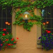 Интересный дизайн домов, фасадов фото