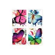 Тетрадь Butterflies фото