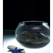 Грязь бальнеологическая «Марциальные воды» фото
