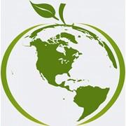 Экологический менеджмент и аудит фото