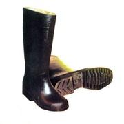 Резиновые формовые мужские сапоги артикул 173-113 фэт фото