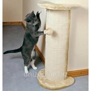 Когтеточка для котов угловая Trixie Lorca фото