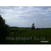 Земельный участок 25 соток село Красное на юге Московской области фото