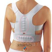 Магнитный корректор осанки Magnetic Posture Support размер L-XL, талия (81 - 117 см) фото
