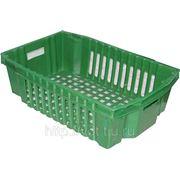 Ящик-корзина №1 ЯПМ-1 Цветной 600*400*180мм (овощной) фото