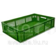 Ящик для продуктов и овощей(610*405*180мм) фото