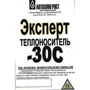 """Теплоноситель """"ЭКСПЕРТ"""" -30С Канистра 5 кг.. фото"""