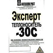 """Теплоноситель """"ЭКСПЕРТ"""" -30 налив фото"""
