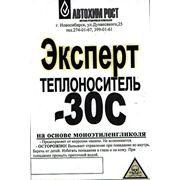 """Теплоноситель """"ЭКСПЕРТ"""" -30С Канистра 10 кг. фото"""