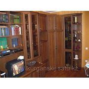 Гостиный гарнитур на заказ Алматы фото