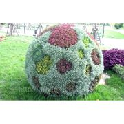 Объемный шар диаметром 1,5м (FD-1500) фото