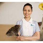Домашний персонал из Филиппин и Тайланда фото